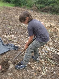 5099: Looking for earthworms
