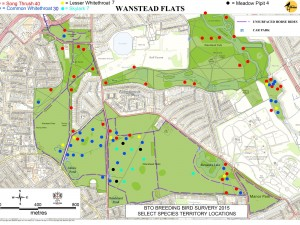 Wanstead Breeding Bird Survey